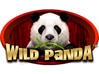 Wild Panda Slot screenshot